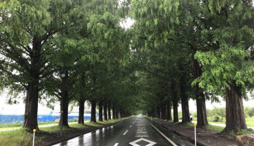 一人旅に行ってきた 琵琶湖西エリア 2